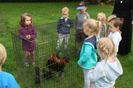 Warsztaty przyrodnicze pt. ''Zwierzęta gospodarskie''